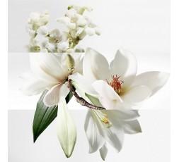 Feuchtigkeitsspendende Körperlotion mit angenehmen Duft nach Magnolien und Orangenblüten 200 ml